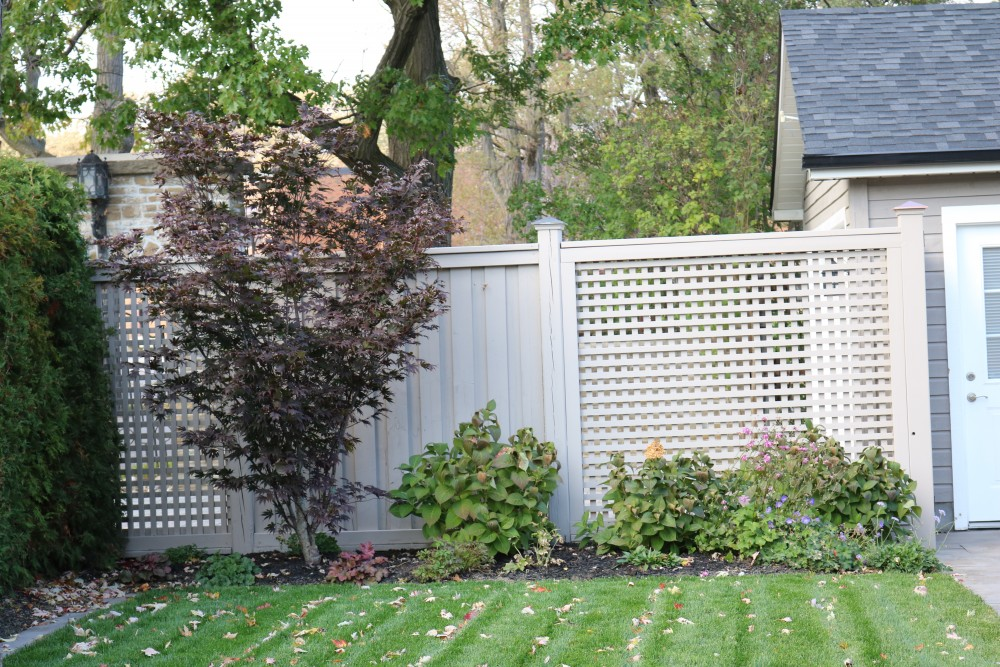 decorative fence, screen, Japanese maple