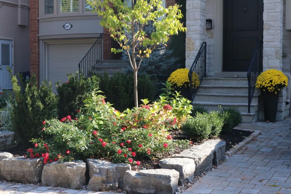 armor stone retaining wall, shrub roses, driveway, front yard